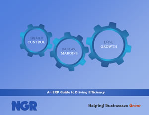 An ERP Guide to Driving Efficiency