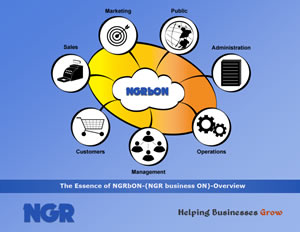 The Essence of NGRbON - An Overview